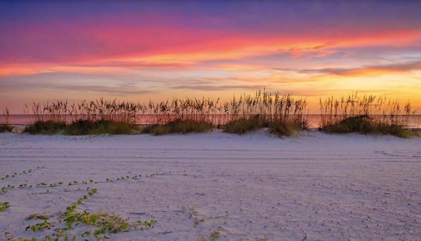 Anna Maria Island and Bradenton Guidebook