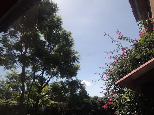 Guía de Casa Alexandra para disfrutar de San Cristóbal de las Casas