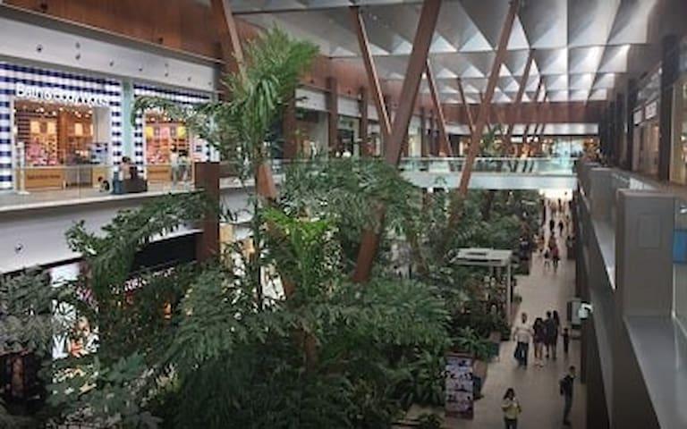 C. Comerciales y Plazas Veracruz Y Boca Del Río