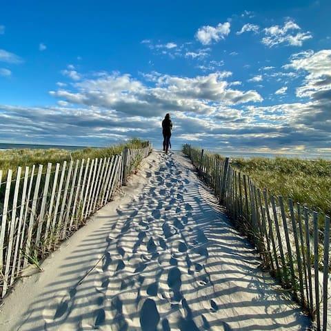 Dune's Secret Guidebook to Hampton Bays