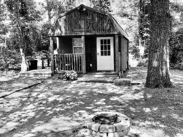 Little Cabin in the Pines
