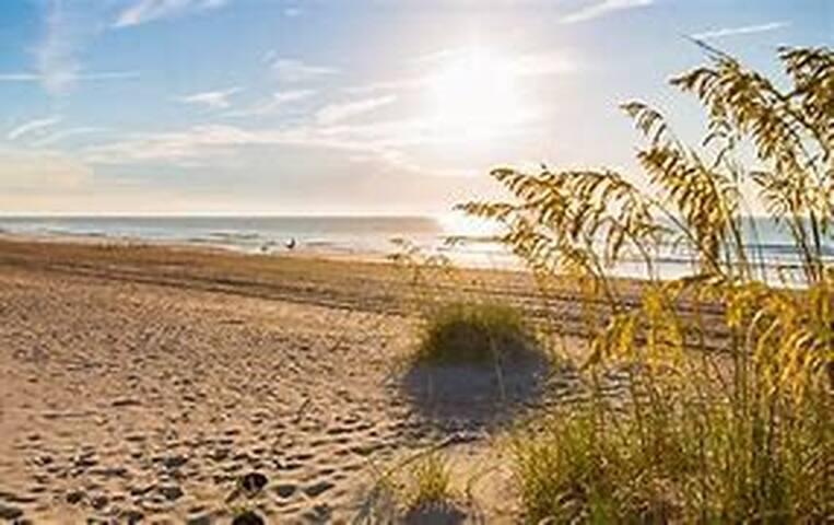 Guidebook for Fernandina Beach