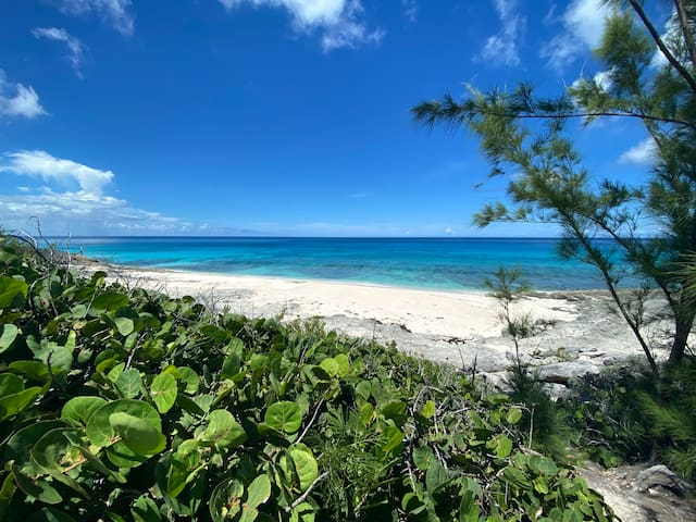 Guidebook for Eleuthera Bahamas