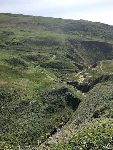 Koa Tree Glamping and adventures in North Devon