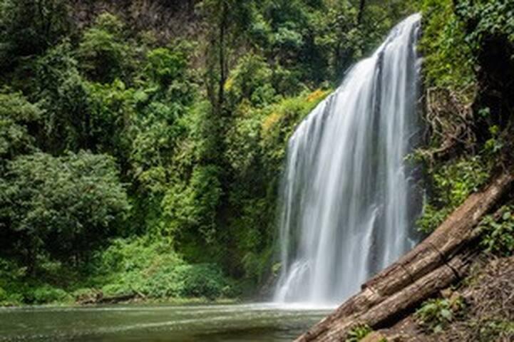 Cascadas de Chimalapa
