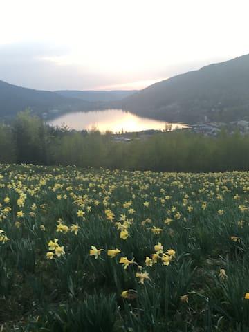 Beautiful Vosges