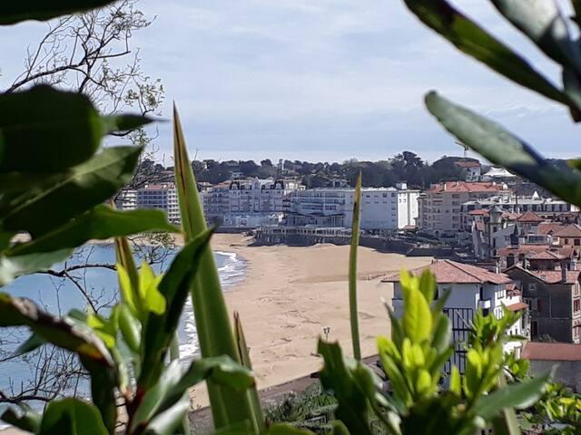 Adresses incontournables au pays basque.