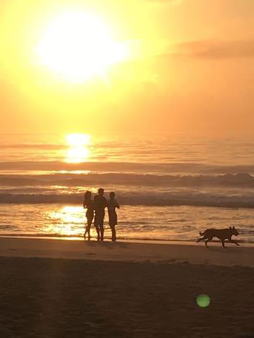 O que fazer no Campeche - Florianópolis, Santa Catarina