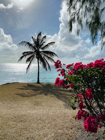 Guidebook for Barbados