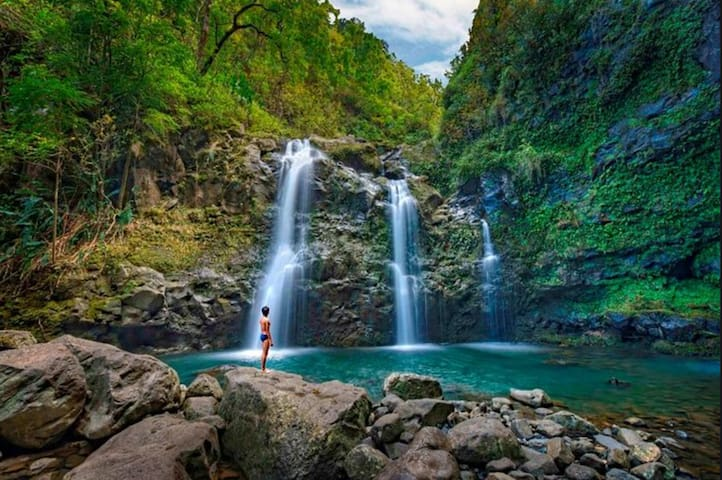Maui Sightseeing Guide