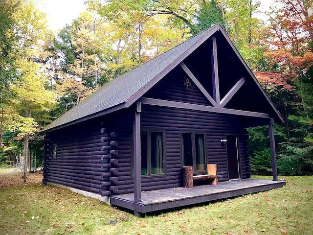 Guidebook log cabin