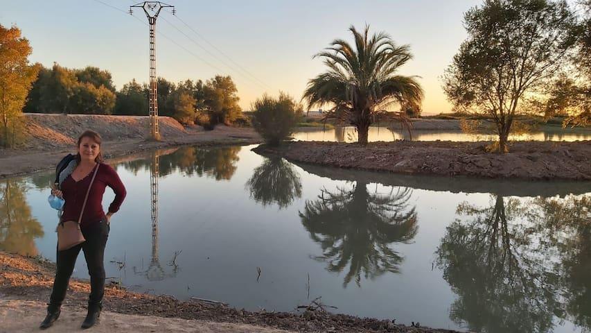 Playa, naturaleza y relax a 15 minutos de Valencia ciudad.