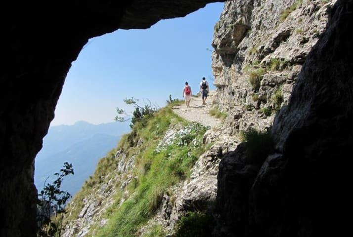 Parks & Nature - visita anche il sito www.magicoveneto.it