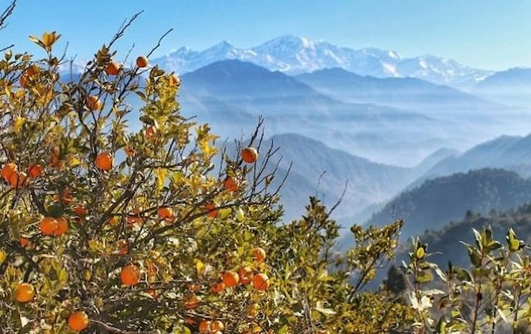 Guidebook : Quaint, Remote, Rural & Cosy Himalayan Homestay