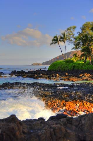 Chris's Maui Guidebook