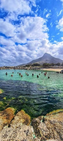 Lisa's Guidebook to the best of Cape Town