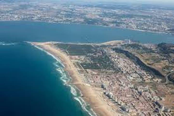 Guia deRozana  VIVER  a Costa de Caparica