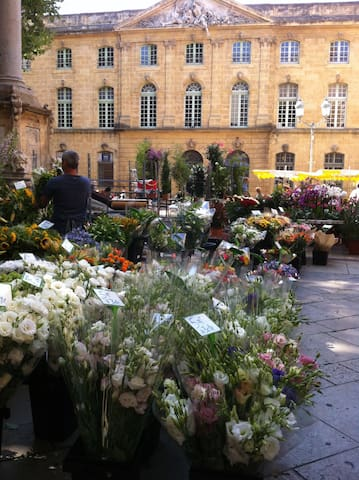 Guidebook for Aix-en-Provence