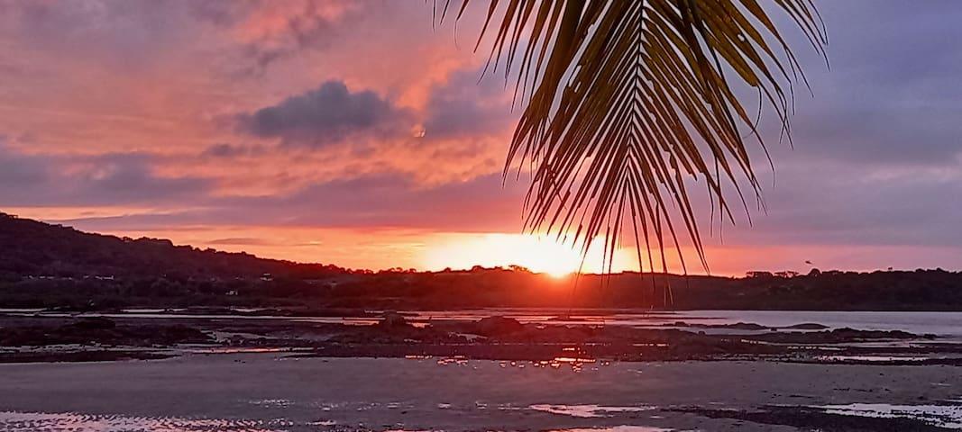 La Guia de Manuel - Playa Dorada!