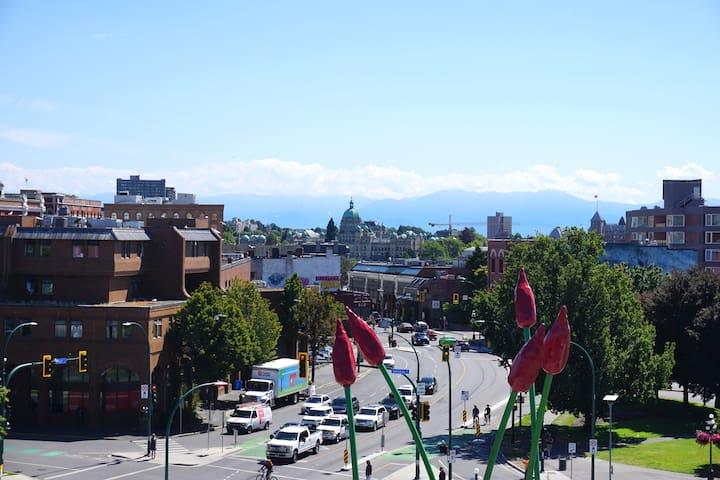Tatum & Chet's guidebook for Victoria, BC