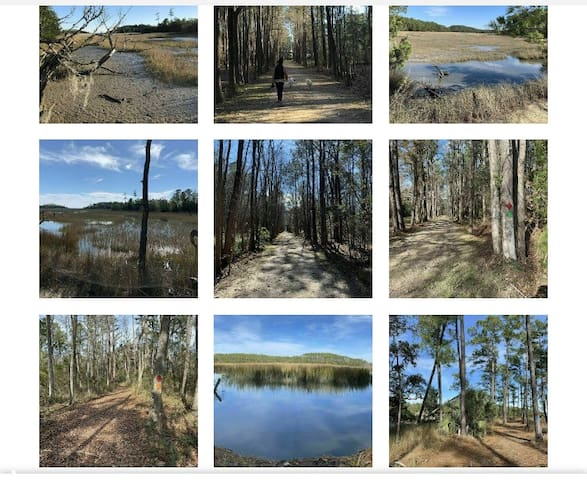 Hiking and walking trails