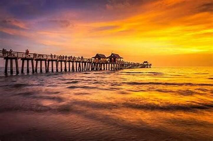 Gulf Coast Cottage guidebook