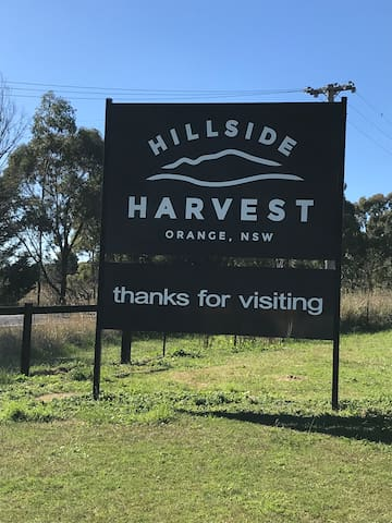 Hillside Harvest - Farm stall and Orchard