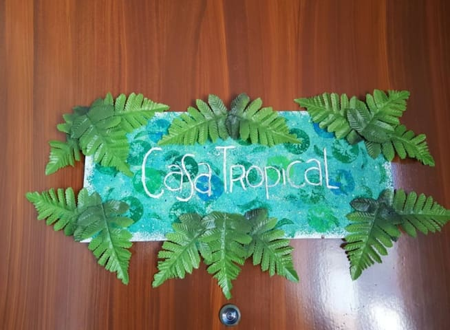 Casa Tropical - Liz Guide