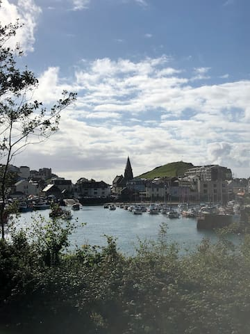The Knook's guide to your Ilfracombe stay.