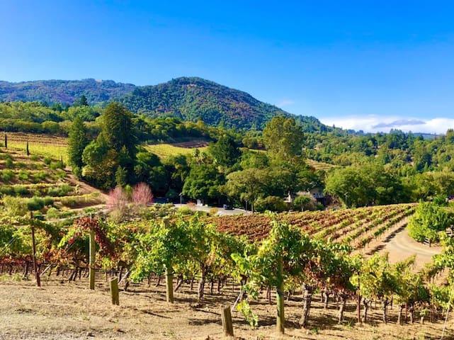Sonoma Valley Terrace Guidebook