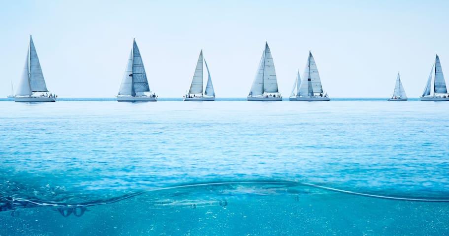 Plaisir nautique 🐠