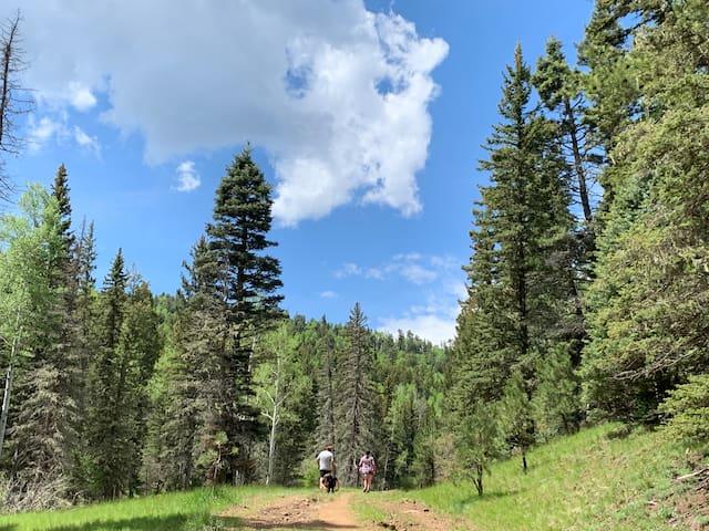 Hiking Around Taos