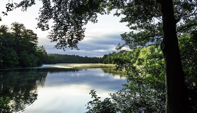 Sophie's guidebook for Virginia Water Stays