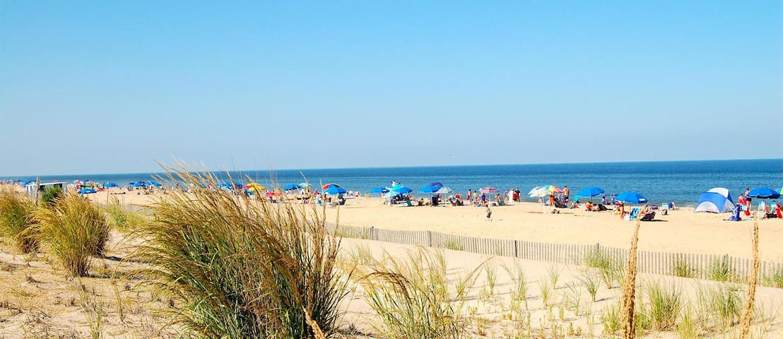 High Tech Hideaway's Guide to Delaware Beaches