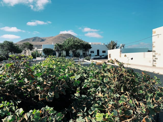 Our Guidebook of Lanzarote
