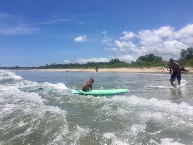 Chaca's Callejones beach guide