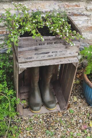 Guidebook for Dartington, Totnes and Surrounding Areas