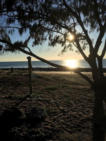 Sue's guidebook to Innes Park and Bundaberg area