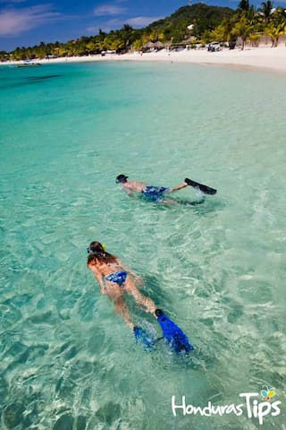 Springwater Resorts guidebook