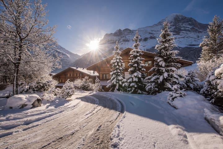 Dianne's guidebook for Grindelwald