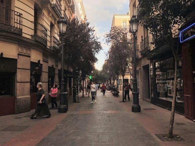 Puerta del Sol, Plaza Mayor y Bº de las Letras