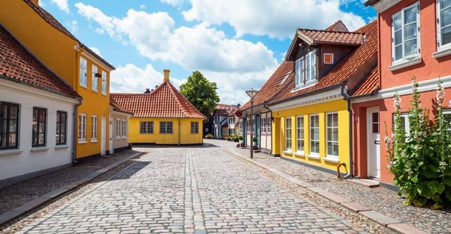 Mikkels guidebook for Odense