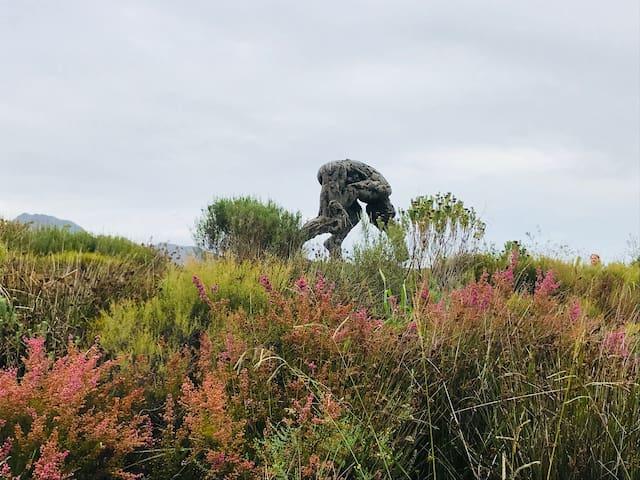 Guidebook for Stellenbosch