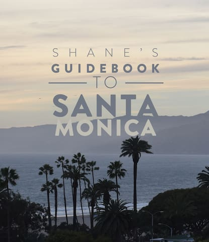 Shane's guidebook