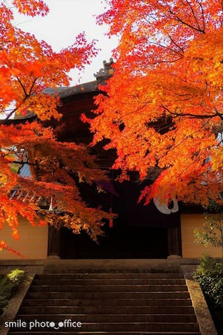 Guidebook for Kyoto