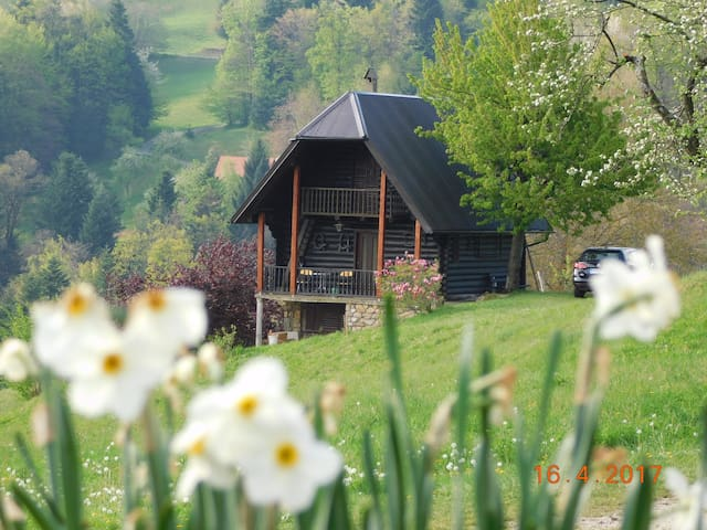 Gradpa's lodge in peaceful area - Planina pri Sevnici - Nature lodge