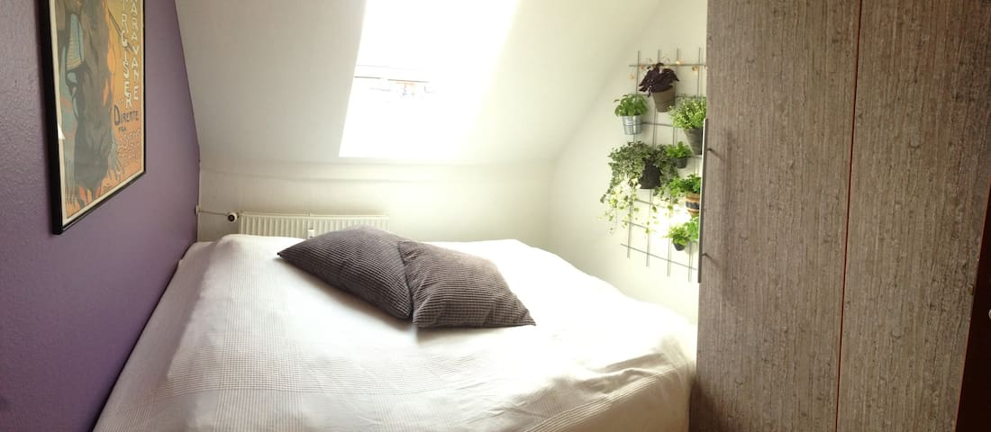 Small room in big shared apartment