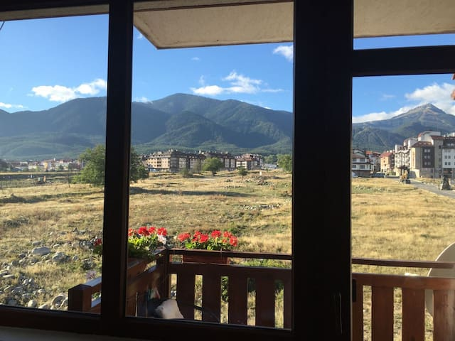 Apartment with mountain views and free WiFi