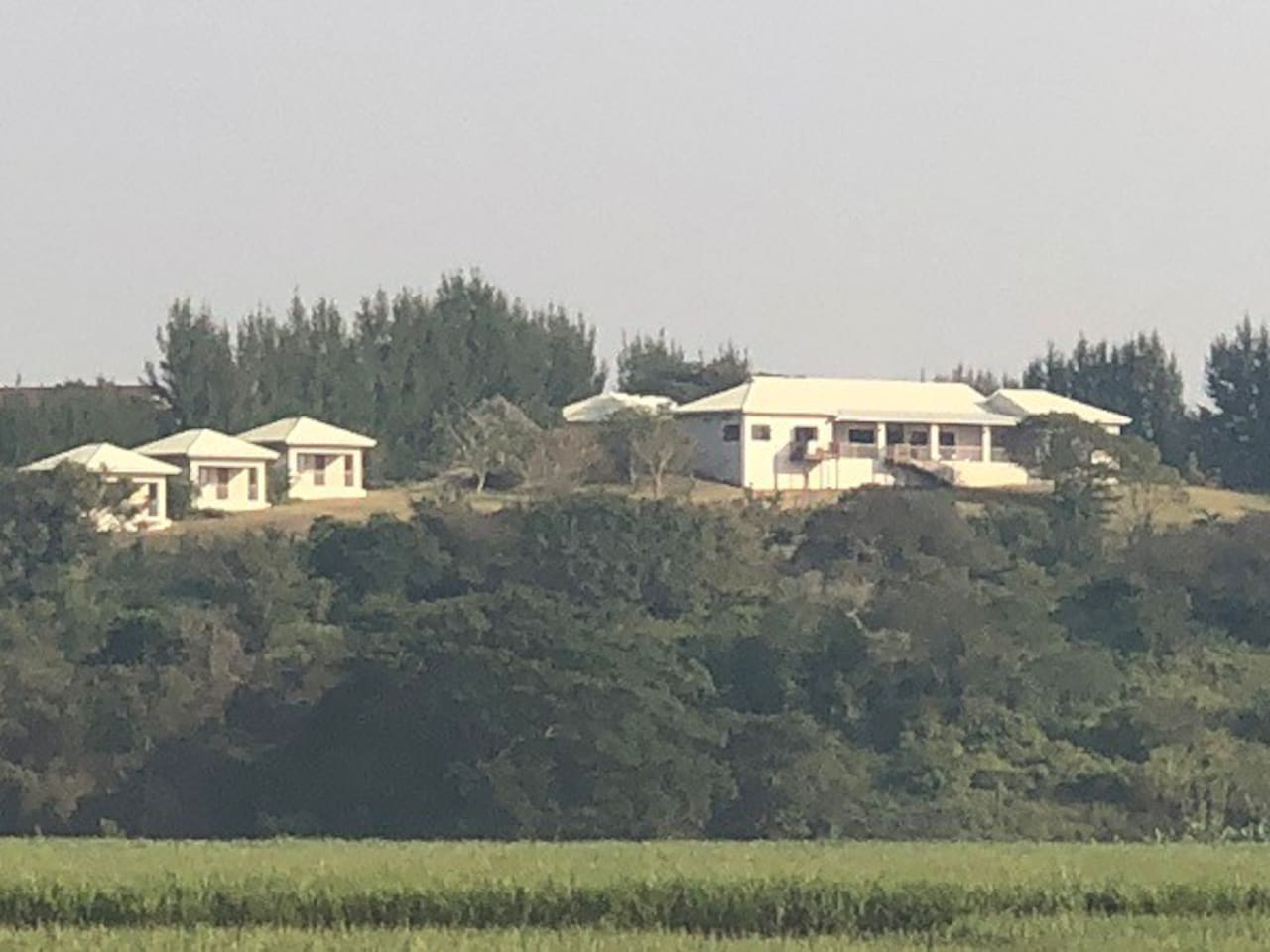 Distant pic of Fairview Cottages
