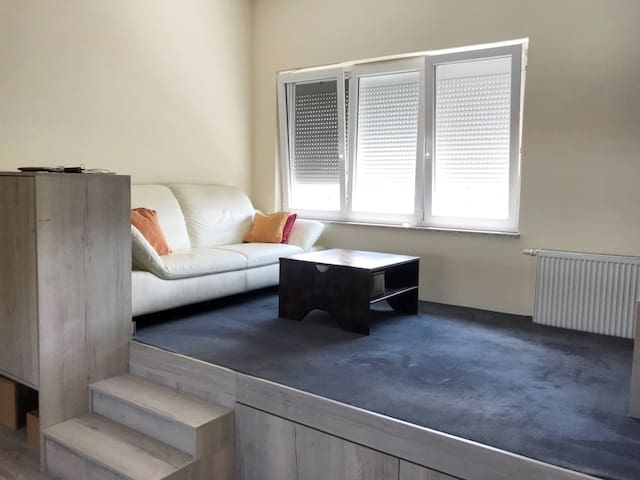 Living room with leather sofa, window with insect screen